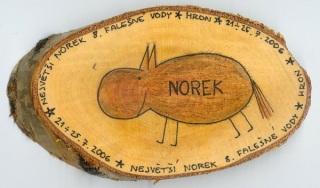 fvoda06_norek